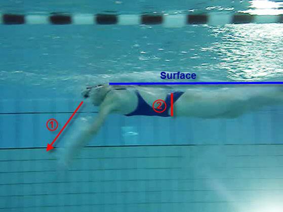 technique de nage - Traduction anglaise Linguee