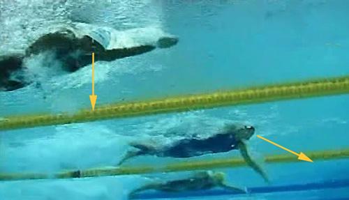 Position des deux nageuses lors d'un 50 nage libre